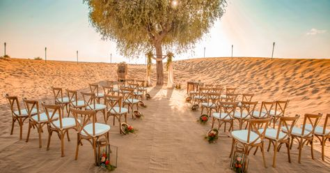 Wedding Ceremony at Bab Al Shams